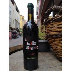 La Pedra Pintada, Vin de France Rouge 2017